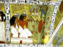 Alberi antico Egitto
