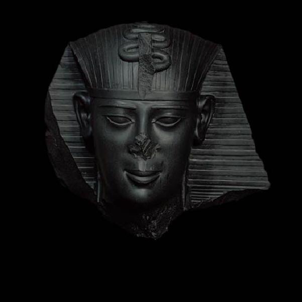 Faraoni neri